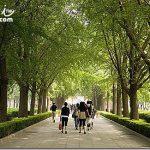 北京遊記Beijing Travel(9) 雍和宮祈福、悠閒南鑼鼓巷、後海酒吧聽歌