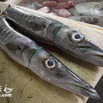 巴里島旅遊景點推薦 金巴蘭魚市場(Jimbaran Fish Market)