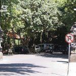 巴里島旅遊自由行景點推薦 烏布猴子森林(Ubud Monkey Forest)