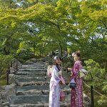日本大阪京都旅遊日記 12 櫻花妹