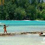大溪地旅遊(Tahiti Travel)茉莉雅島 (Moorea)旅遊資訊簡介