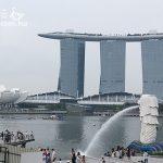 橫跨歐亞八國行 2 新加坡 當神豬來餵