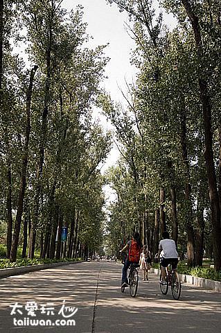清華大學校園