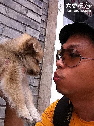 超可愛的小狗