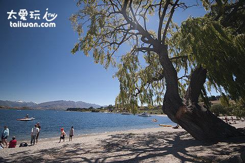 悠閒的瓦那卡湖