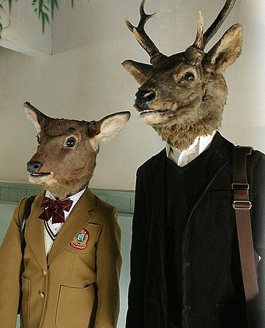 鹿男有拍攝成日劇