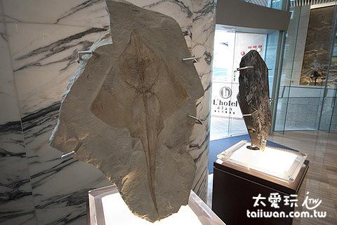 如心艾朗酒店內陳設的真化石