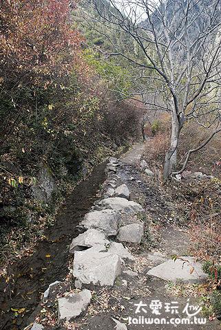 尼農的泥濘小路