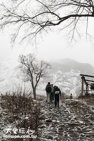 沿途的枯樹與白雪讓人覺得蕭瑟孤獨