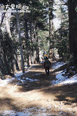 下山沿路仍有積雪