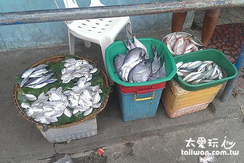董索Donsol魚市場