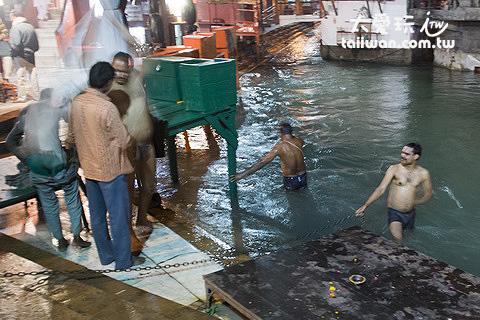 印度人用恆河水洗淨罪惡