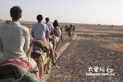 騎駱駝回家囉