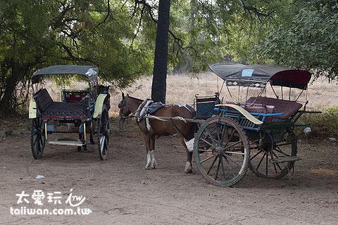 馬車一天租金15000~25000緬甸幣