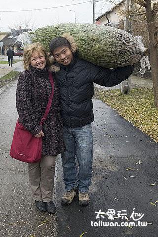 買棵聖誕樹