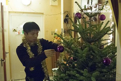 開始裝飾聖誕樹了