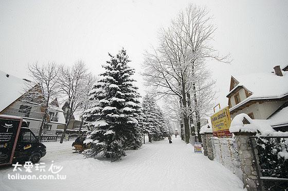 Zakopane白色的街景