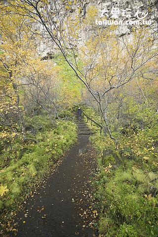 Asbyrgi and Jökulsárgl的秋天非常美麗