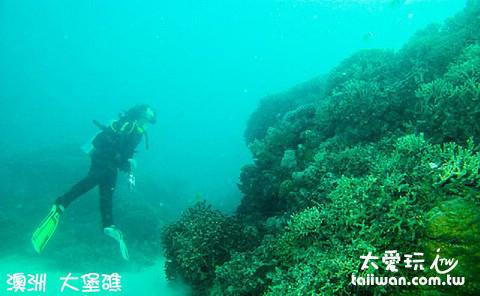 大堡礁海底世界