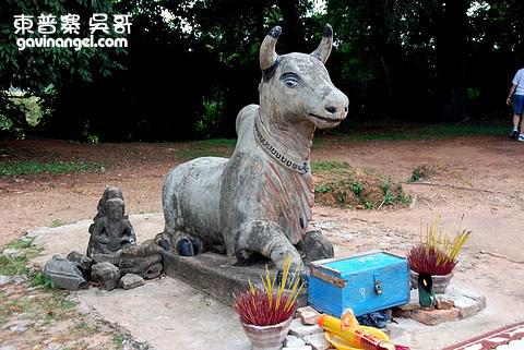 金字塔前的神牛