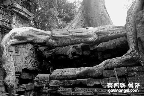 塔普倫寺大自然的力量