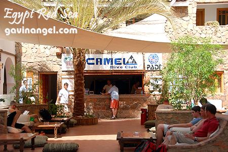 駱駝潛水飯店俱樂部