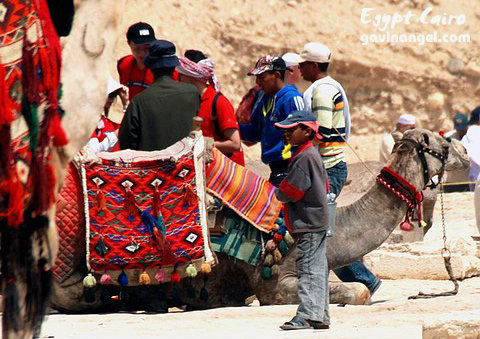 駱駝商人拼命地輪流糾纏,用盡各種方式想要騙錢
