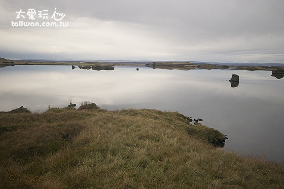 米湖Mývatn面積廣達37平方公里,深度卻只有不到3公尺