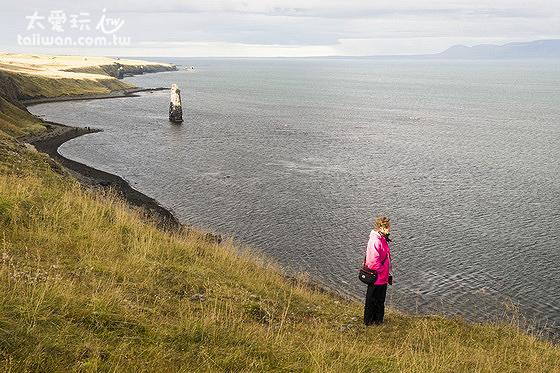 Hvítserkur cliff 象形岩孤伶伶在海上