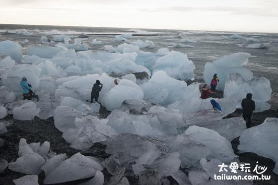 海灘上擠滿了享受日光浴的冰塊們