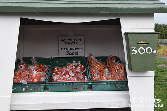 良心商店放了新鮮番茄與紅蘿葡,一袋300ISK