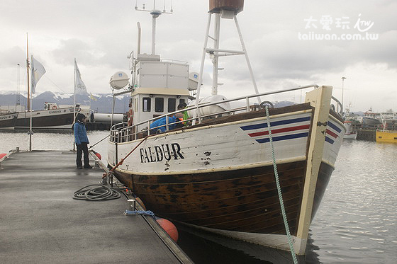木船的反應比較慢,距離鯨魚也稍微遠一點點,整個行程約3小時