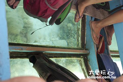 船中間底部有玻璃,可以直接看海底