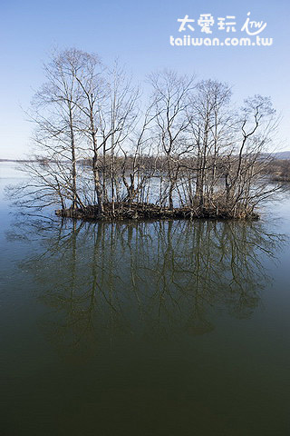 大沼公園湖水倒影