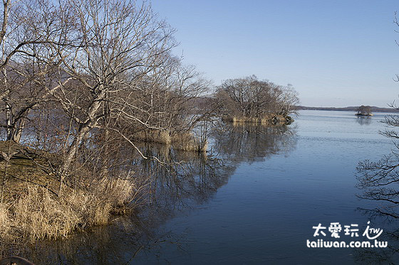 冬天湖水初成薄冰的景色