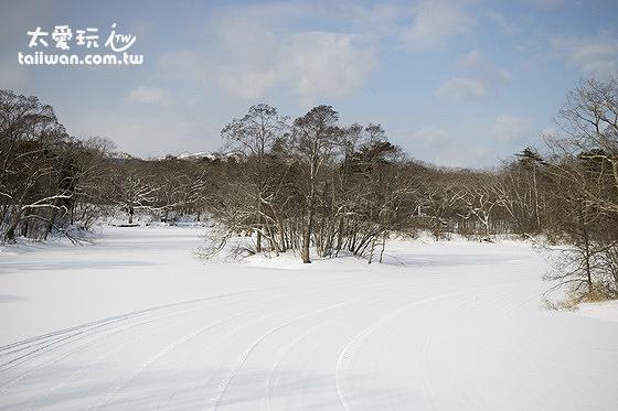 大沼公園的嚴冬已經分不出路面與湖面了