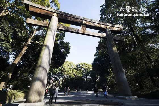 明治神宮第2個鳥居是全日本最大的,木頭來自台灣
