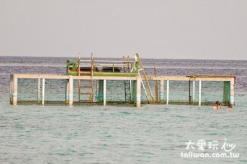 外海的海龜復育場