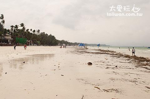 西南風的季節會為白沙灘帶來許多漂流物