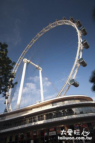 新加坡摩天景觀輪高165公尺(約42層樓)