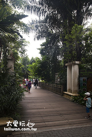 走在動物園裡就像走在森林裡