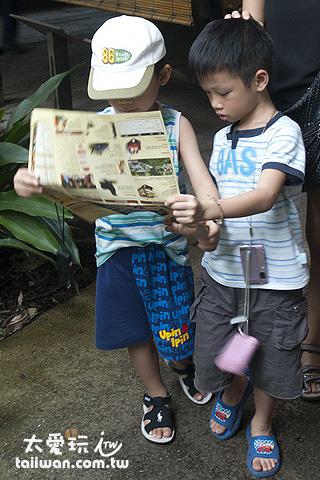 新加坡動物園非常適合小朋友來玩