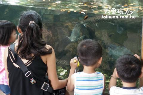 水族動物區
