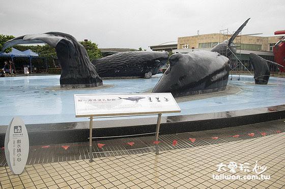 鯨魚親水廣場是小朋友夏天必玩的消暑勝地