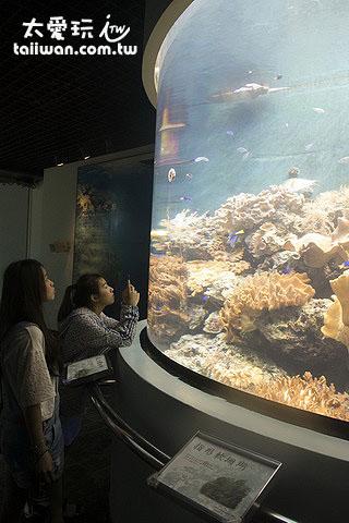 珊瑚王國館各式美麗動人的珊瑚礁呈現眼前