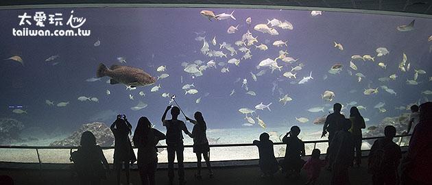 大洋池巨型展示窗