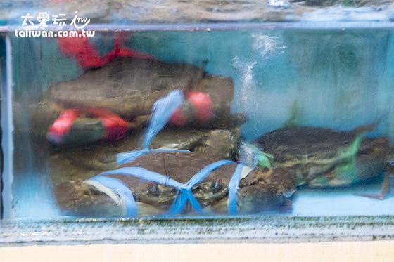大魚缸裡的螃蟹