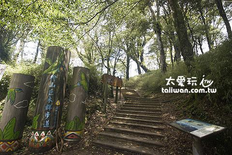 檜山巨木森林群步道
