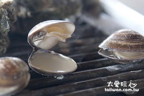 蛤也超新鮮好吃