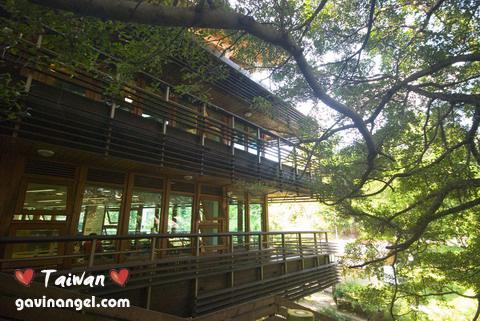 北投圖書館整棟建築幾乎包在樹林之中